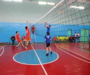 Турнир по волейболу среди школ