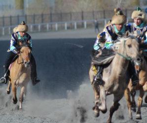 В Уфе стартует первый этап конноспортивного турнира «Терра Башкирия»